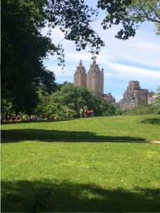 Beautiful day in Central Park